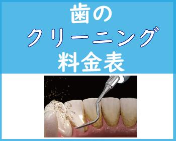 歯のクリーニングの料金表