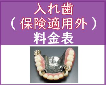 入れ歯、保険適用外歯料金表